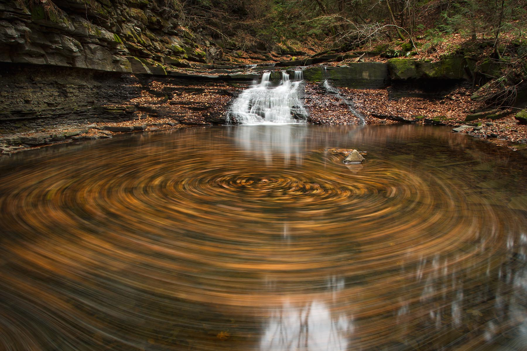 The Anthropocene, Altruism And A Waterfaller