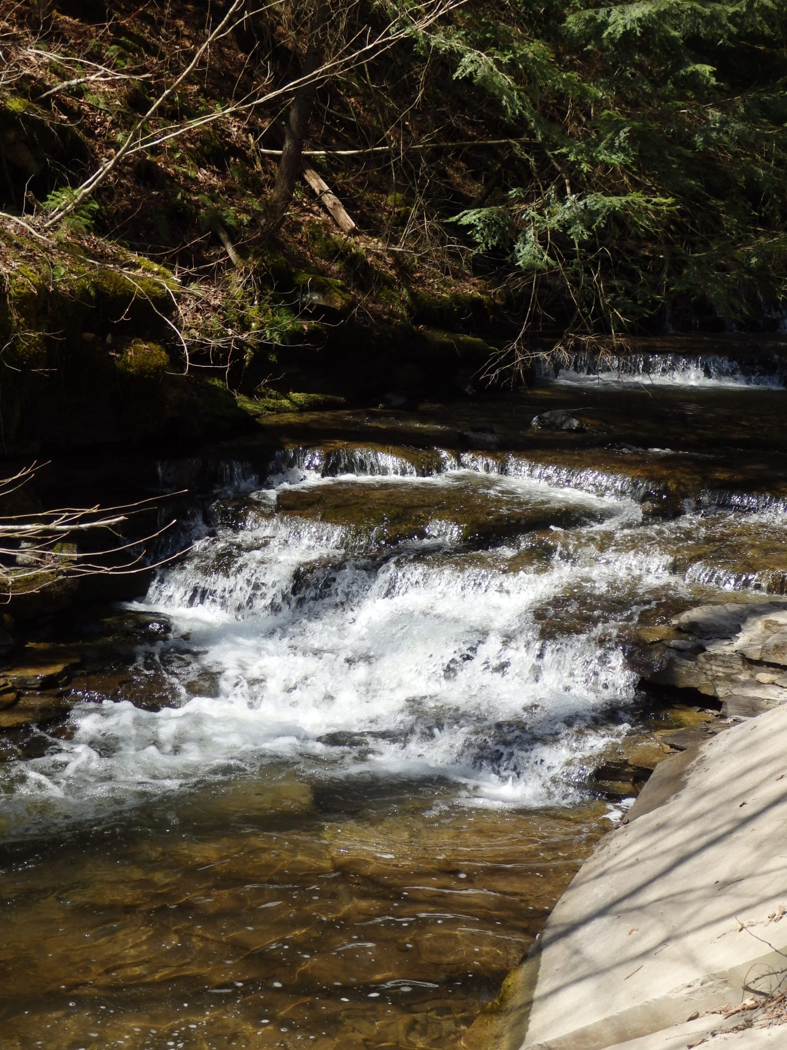 Falls on Barkaboom Stream – Andes