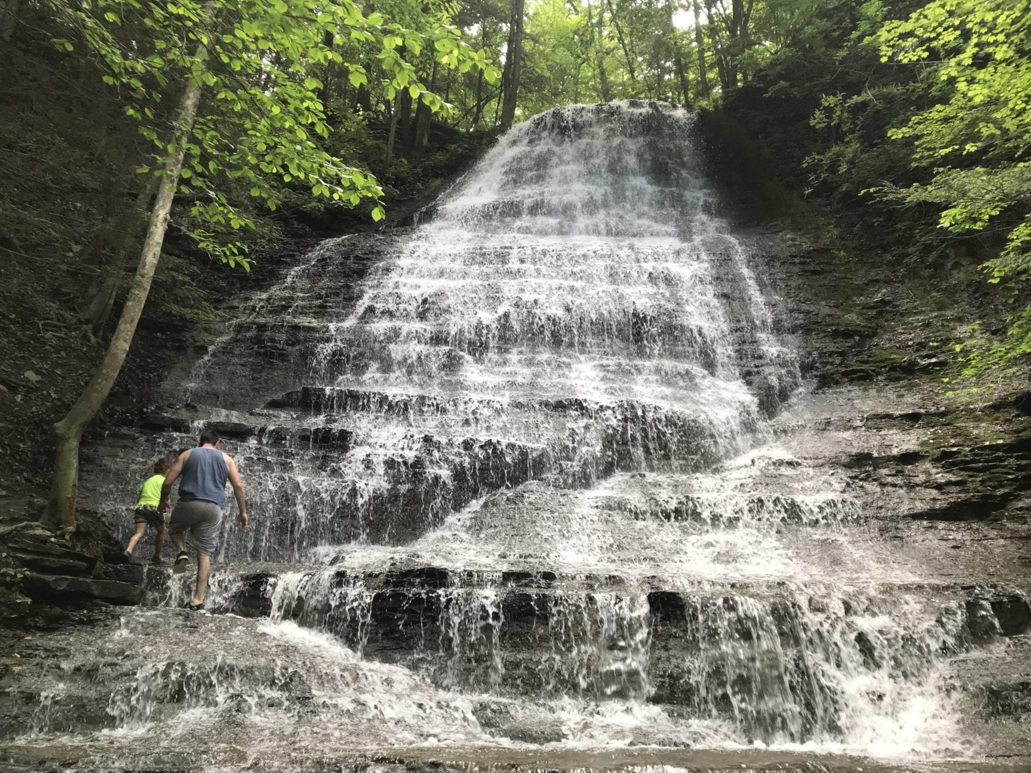 Spring Brook Falls – Ithaca, Town of, Tompkins