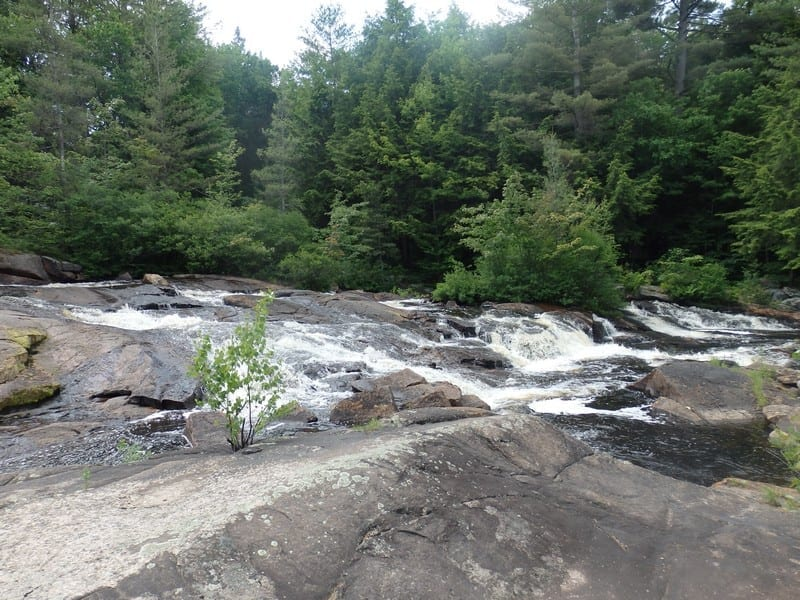 Grout Brook, falls on – Homer, Cortland