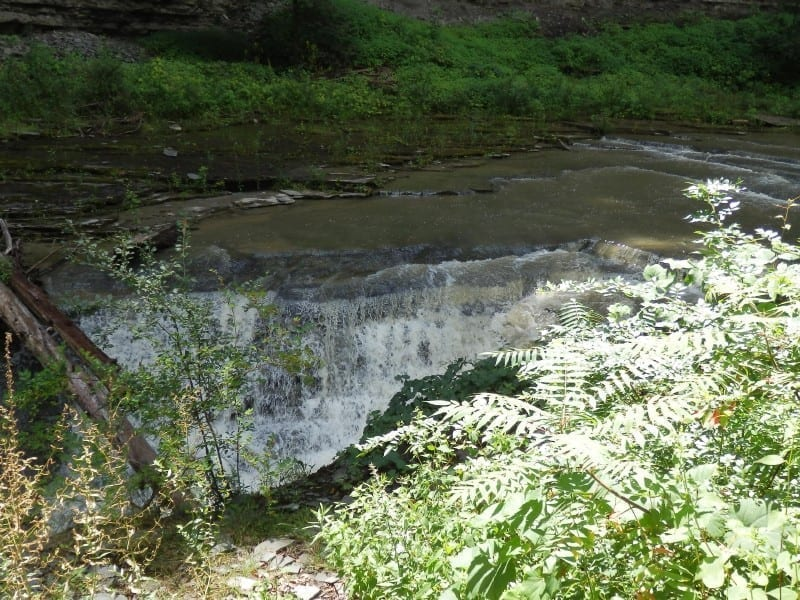 Swans Falls – Glenfield, Lewis